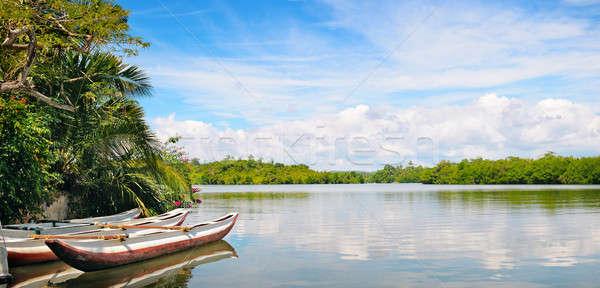 Rzeki Rainforest przyjemność łodzi chmury lasu Zdjęcia stock © alinamd