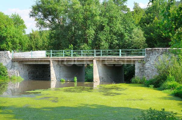 Brug rivier aquatisch planten hemel bos Stockfoto © alinamd