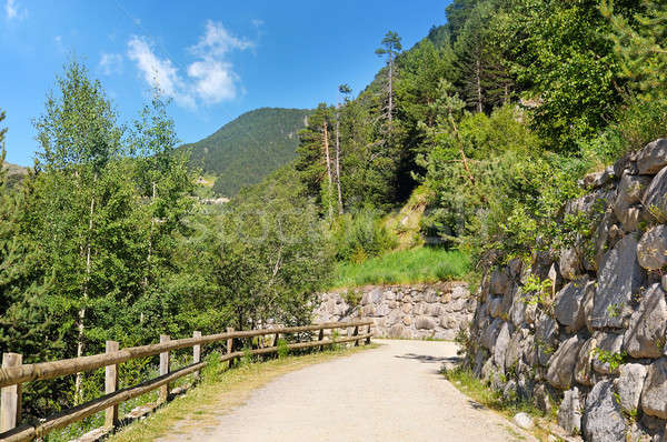 Tourist walking trail in the mountains Stock photo © alinamd