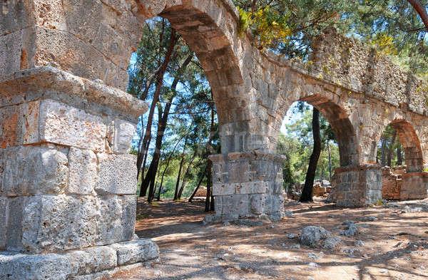 Ruínas antigo cidade árvore fundo verde Foto stock © alinamd