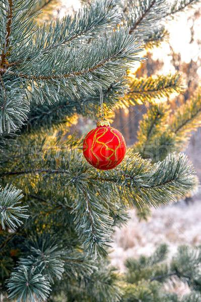 Рождества деревья игрушку дерево счастливым Сток-фото © AlisLuch