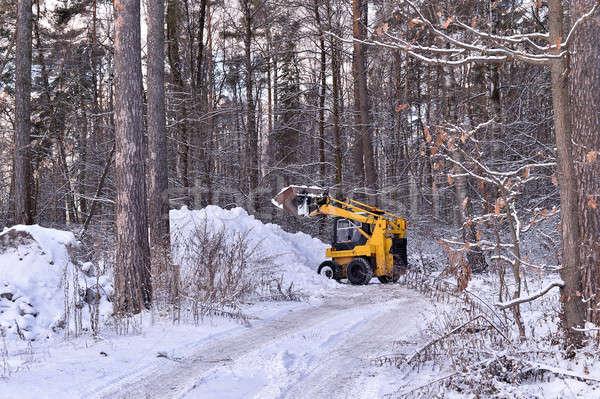Foto stock: Trator · neve · estrada · mata · árvore · floresta