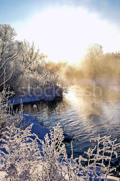 Winter zonnige landschap rivier bos textuur Stockfoto © AlisLuch