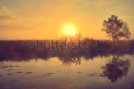 Fotoğraf yaz gündoğumu nehir ağaç çim Stok fotoğraf © AlisLuch