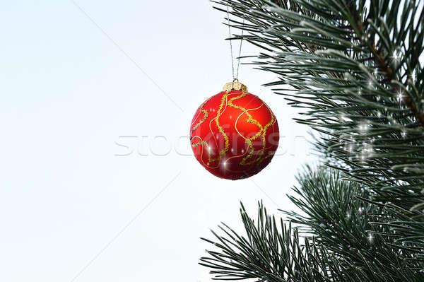 Рождества мяча подвесной сосна лес дерево Сток-фото © AlisLuch