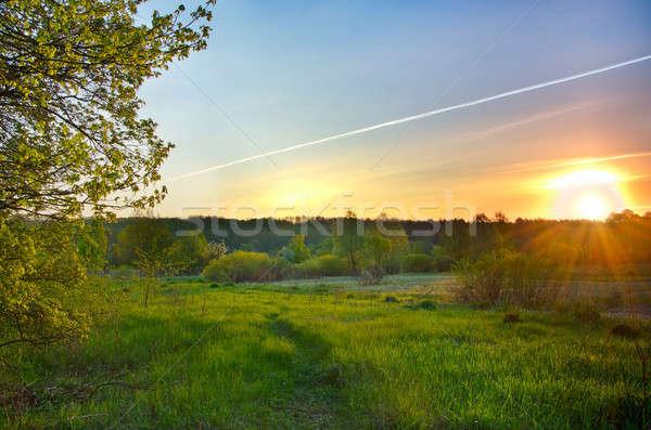 風景 日の出 草原 行 太陽 ストックフォト © AlisLuch