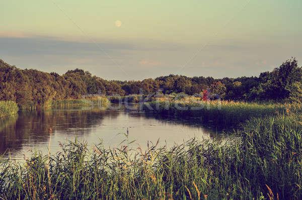 фото реке лет день пейзаж цветы Сток-фото © AlisLuch