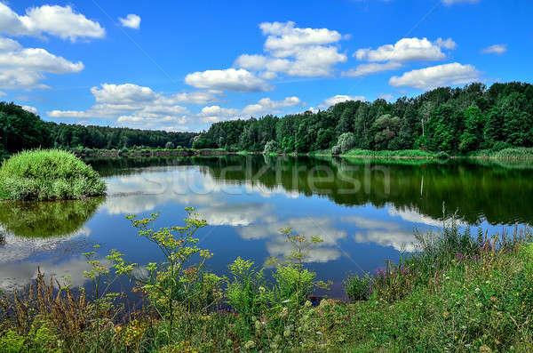 красивой лет пейзаж реке облака растений Сток-фото © AlisLuch