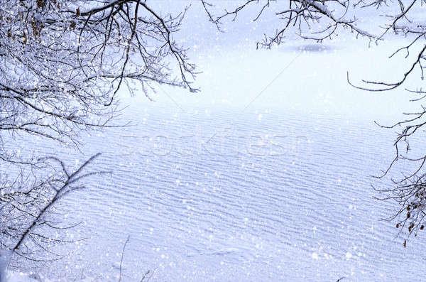冬 表示 フレーム 氷 雪 ストックフォト © AlisLuch
