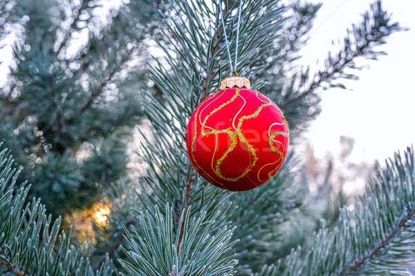 Noel ağaçlar oyuncak ağaç mutlu Stok fotoğraf © AlisLuch