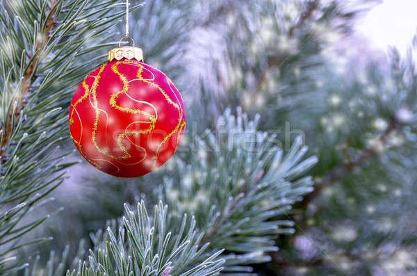 新しい 年 ボール 絞首刑 支店 クリスマスツリー ストックフォト © AlisLuch