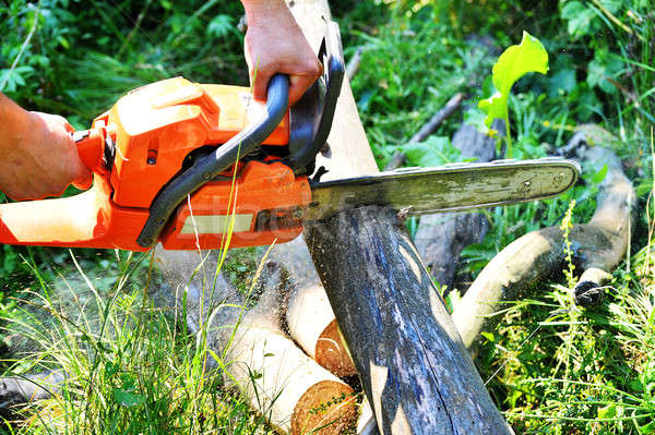 Chainsaw cut wooden logs Stock photo © AlisLuch