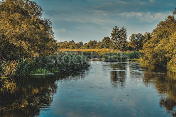 Photo with a river on a clear summer day, landscape Stock photo © AlisLuch