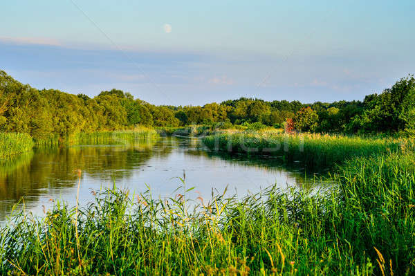 Stock photo: Photo with a river on a clear summer day, landscape
