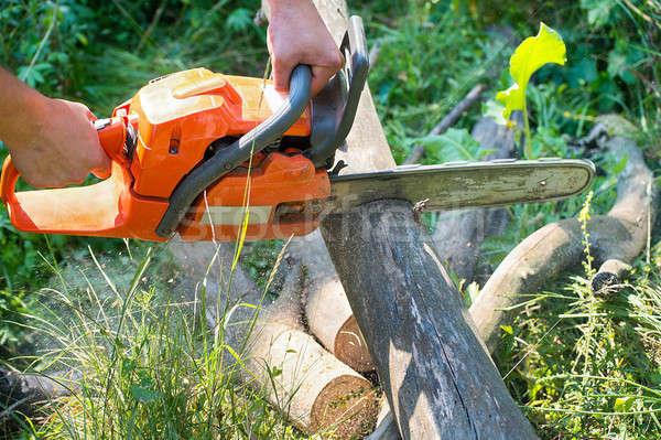 チェーンソー カット 木製 電気 森林 ストックフォト © AlisLuch