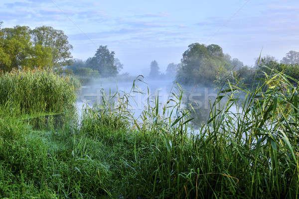 фото тумана реке утра небе дерево Сток-фото © AlisLuch