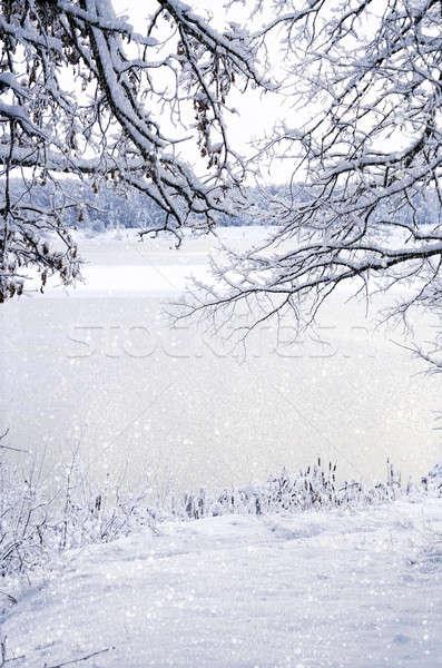 Kış görmek çerçeve buz kar Stok fotoğraf © AlisLuch