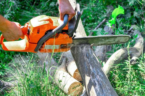 Kettingzaag gesneden houten elektrische bos Stockfoto © AlisLuch
