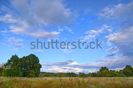 Autumn landscape with low clouds Stock photo © AlisLuch
