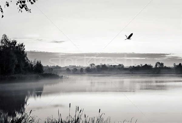 Sabah manzara gündoğumu su sis siyah Stok fotoğraf © AlisLuch