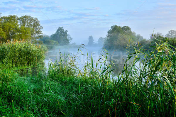Photo of fog over the river in the morning Stock photo © AlisLuch