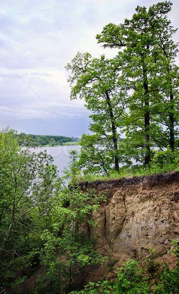 Ağaçlar kenar uçurum büyümek manzara yaz Stok fotoğraf © AlisLuch