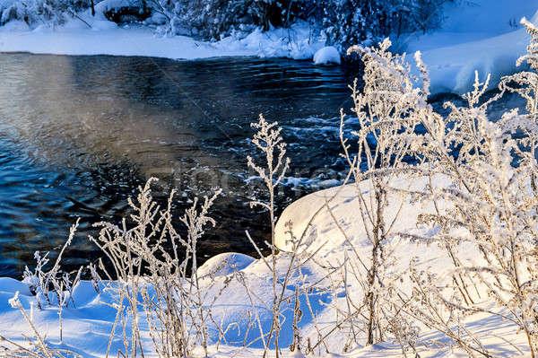 Invierno soleado paisaje río forestales agua Foto stock © AlisLuch