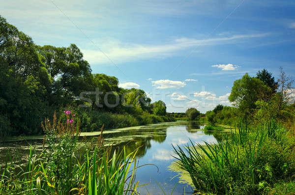 лет пейзаж реке деревья цветения растений Сток-фото © AlisLuch