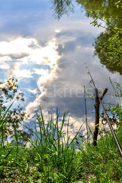 Fishing rod on the river bank among greenery on a fishing trip in the spring. Stock photo © AlisLuch