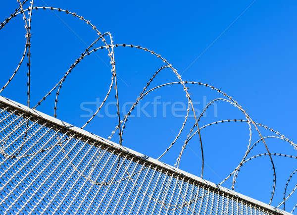 Ogrodzenia drutu kolczastego Błękitne niebo ilustracja wolności wolności Zdjęcia stock © AlisLuch