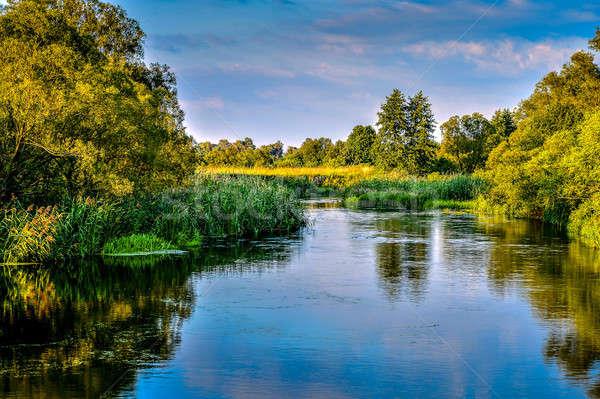 Fotoğraf nehir yaz gün manzara çiçekler Stok fotoğraf © AlisLuch