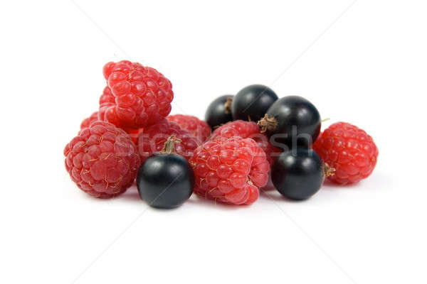 Black currant and raspberry Stock photo © All32