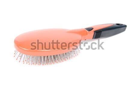 Hairbrush. Stock photo © All32