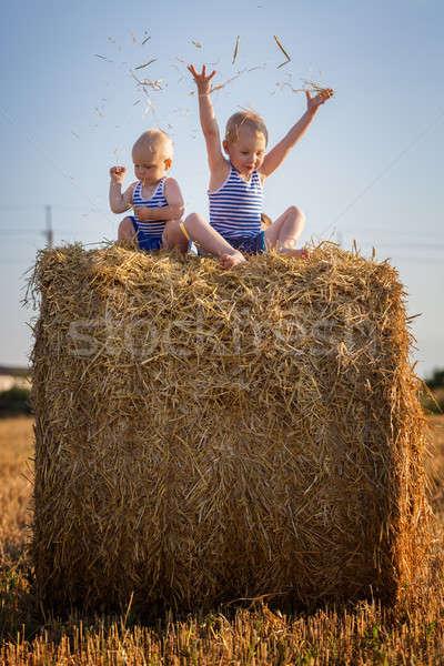 Kinderen spelen vergadering hooiberg klein hand Stockfoto © All32