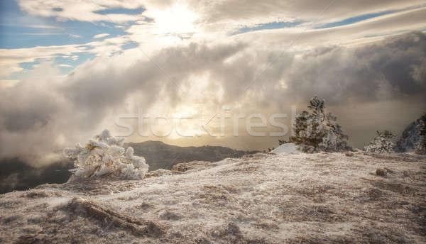 Bomen sneeuw blauwe hemel wolken landschap hemel Stockfoto © All32