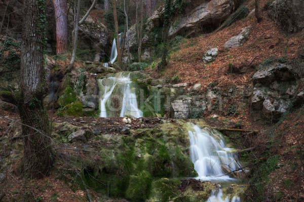 Waterfall in the forest Stock photo © All32