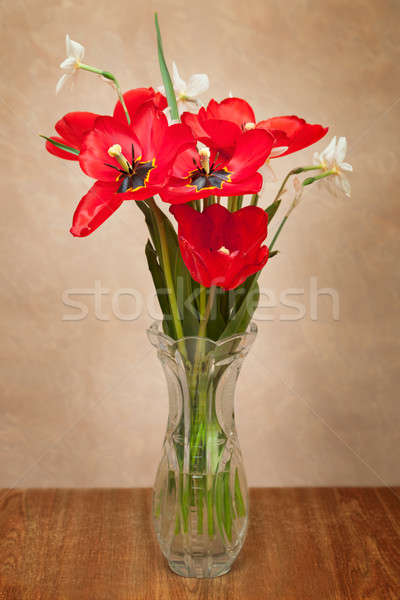 Bouquet of red tulips and daffodils Stock photo © All32