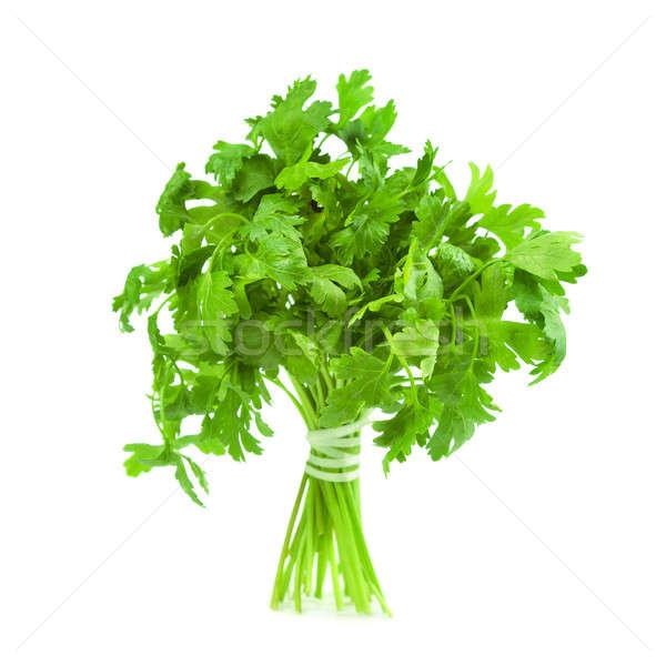 Peterselie geïsoleerd witte voedsel natuur gezondheid Stockfoto © All32