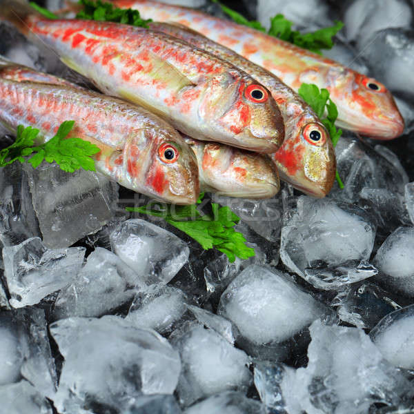 Fresh fish Stock photo © All32