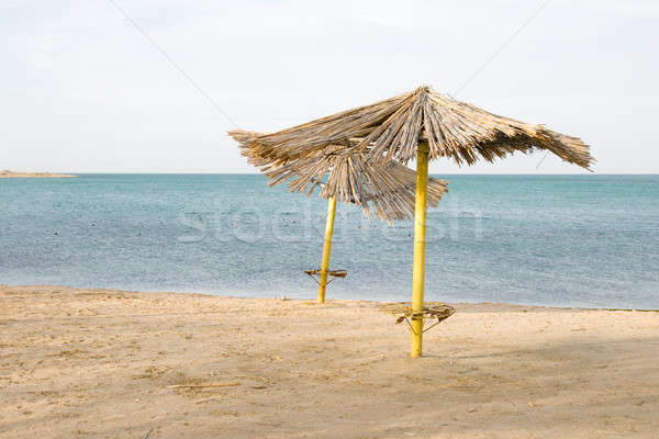 Deserted beach Stock photo © All32