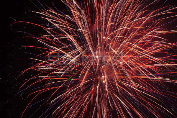 Vuurwerk nachtelijke hemel hemel kunst nacht zwarte Stockfoto © All32