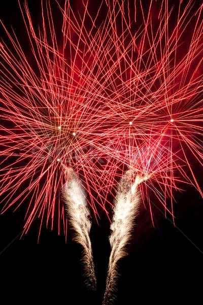 Belo fogos de artifício céu noturno céu luz Foto stock © All32