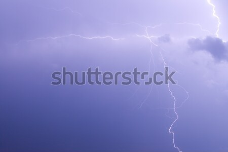 The branches of lightning  Stock photo © All32