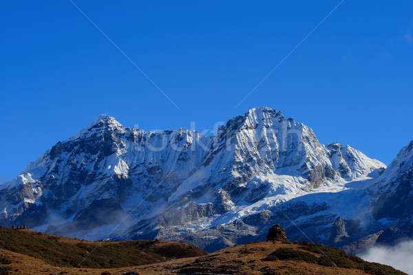 The high snow-capped mountains Stock photo © All32