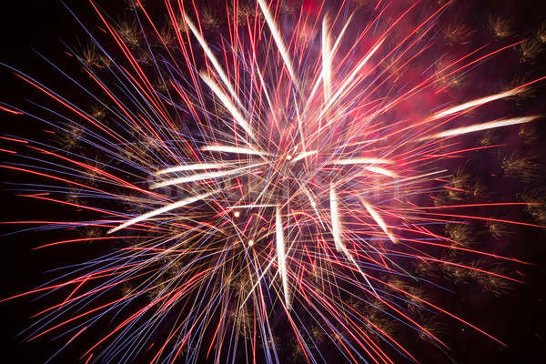 Stock photo: Fireworks in the night sky