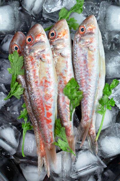Fresh fish (Mullus barbatus ponticus) Stock photo © All32
