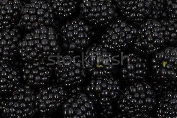 Blackberries  Stock photo © All32