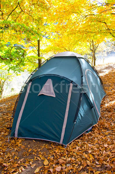 Tent in autumnal forest. Stock photo © All32