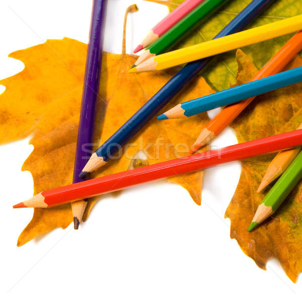 Színesceruza őszi levél iskola erdő háttér Stock fotó © All32
