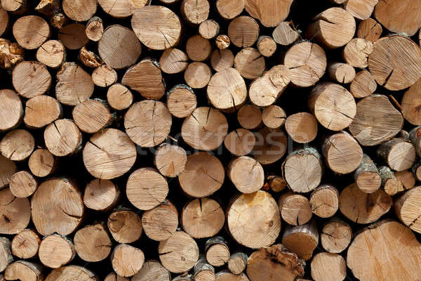 Firewood stacked in the woodpile Stock photo © All32